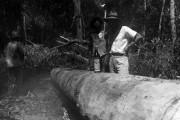 Construção-de-canoa