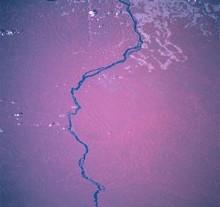 300px-Rio_Xingu