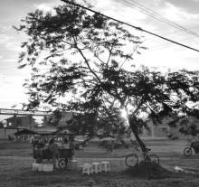 Oiapoque (15)